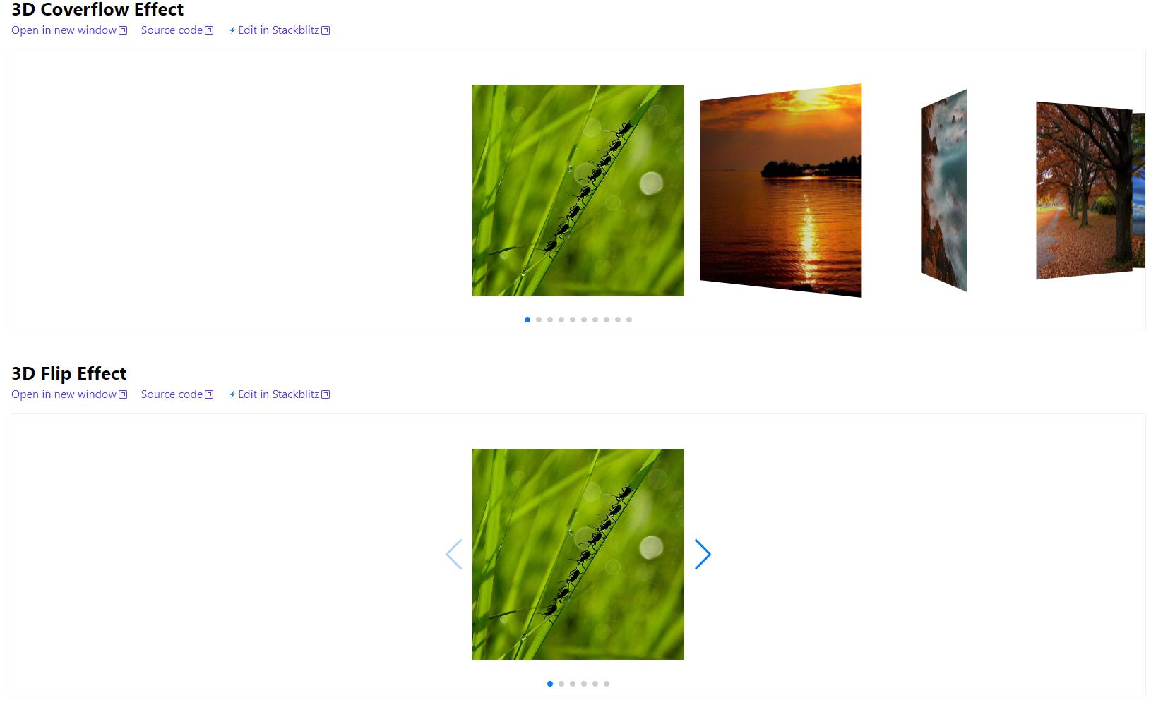 Yii2 swiper slider widget example